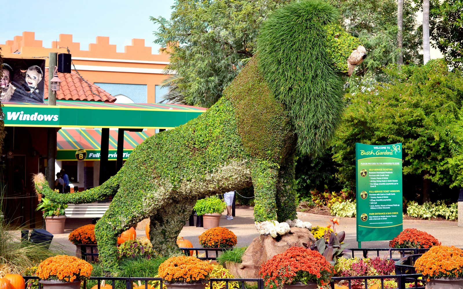 Topiary Lion At Busch Gardens Tampa Entrance