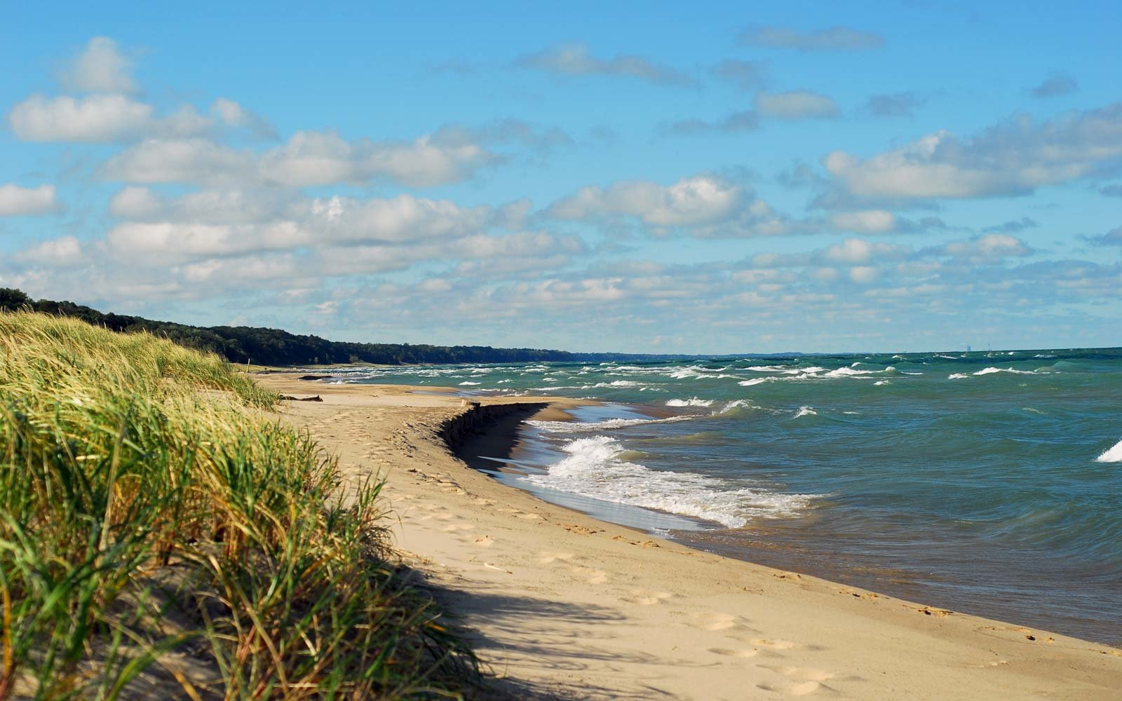 Warren Dunes State Park: Sawyer, Michigan
