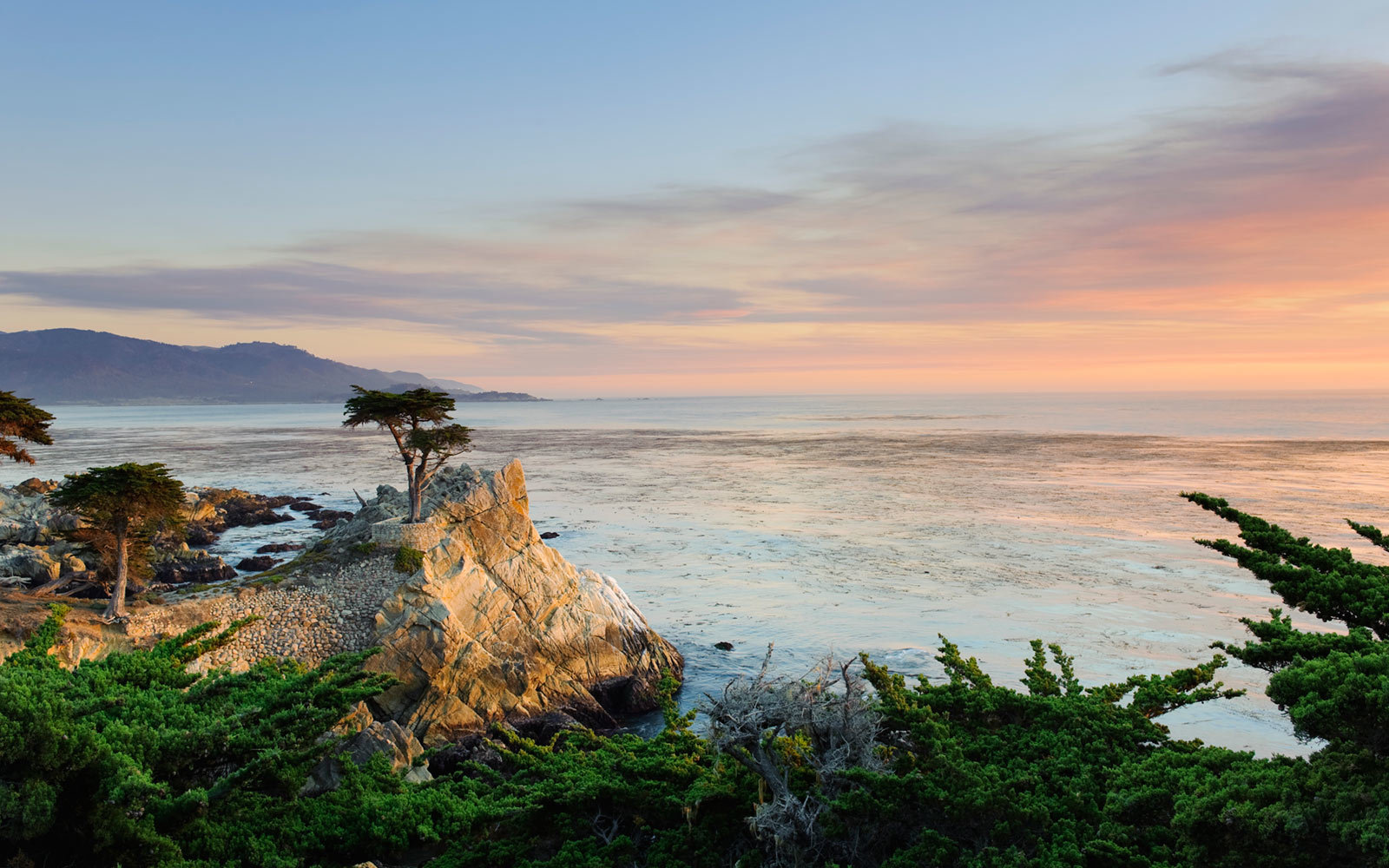 Lone Cypress, 17 mile drive, Pebble Beach, California