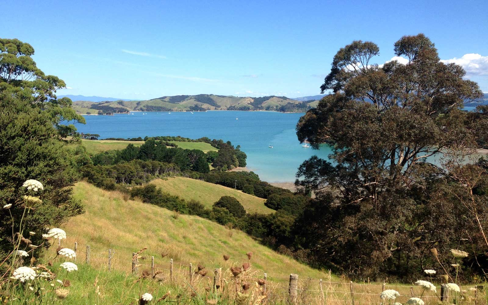 1. Waiheke Island, New Zealand