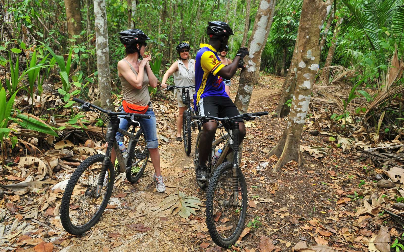 Bike through the jungle of St. Lucia