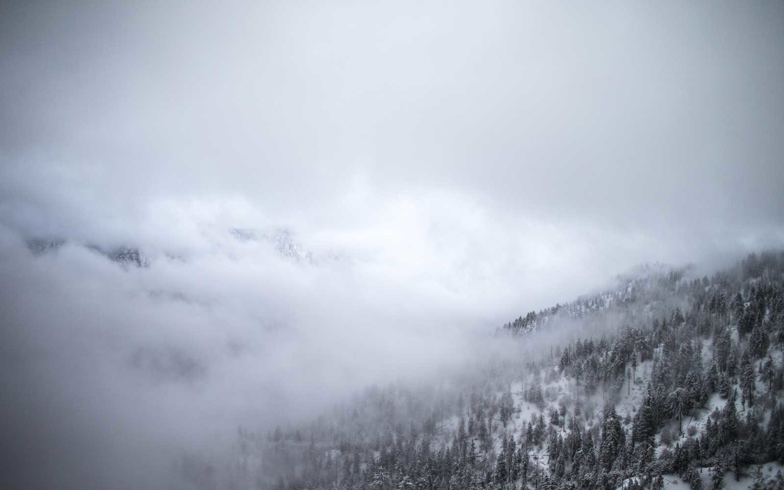 All-weather, all-year Big Bear activities