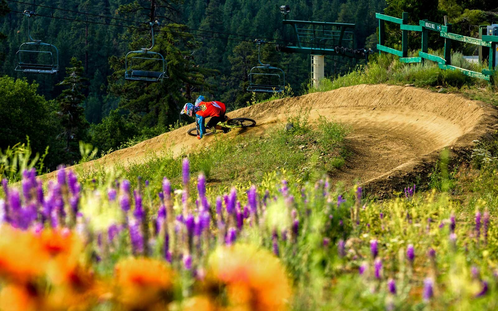 Things to do in Big Bear in the spring and summer