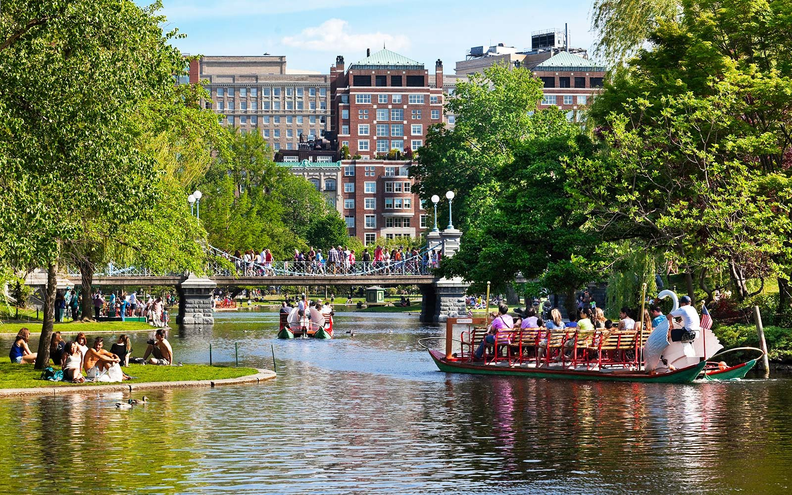 Swan Boats Boston Massachusetts
