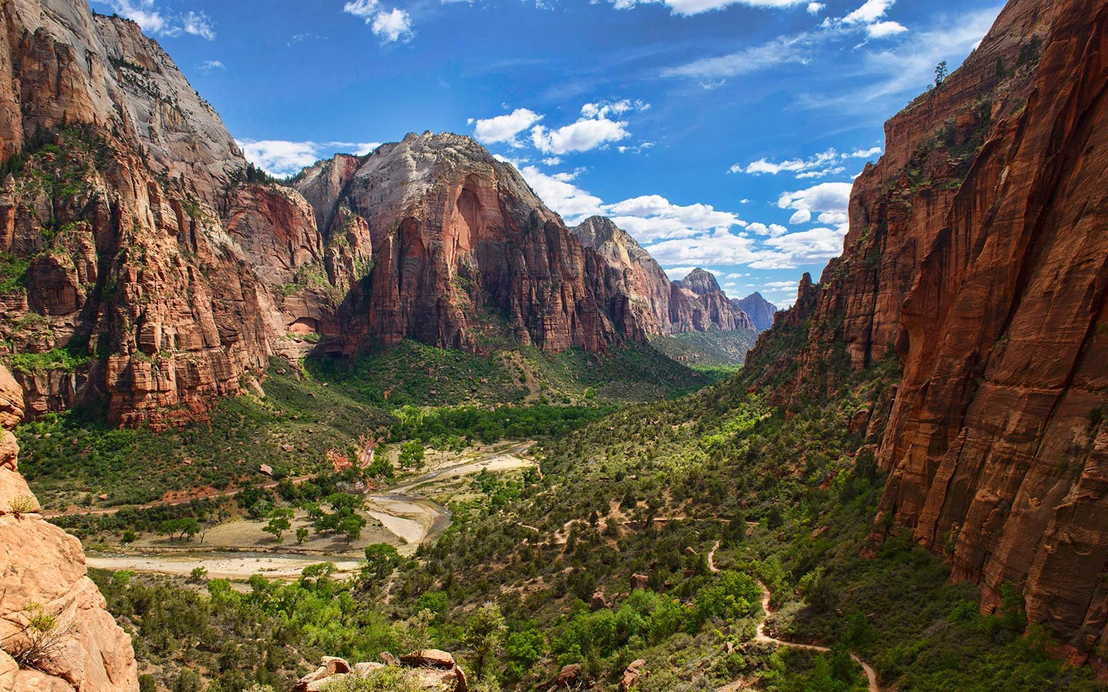 Appreciating nature at Zion National Park
