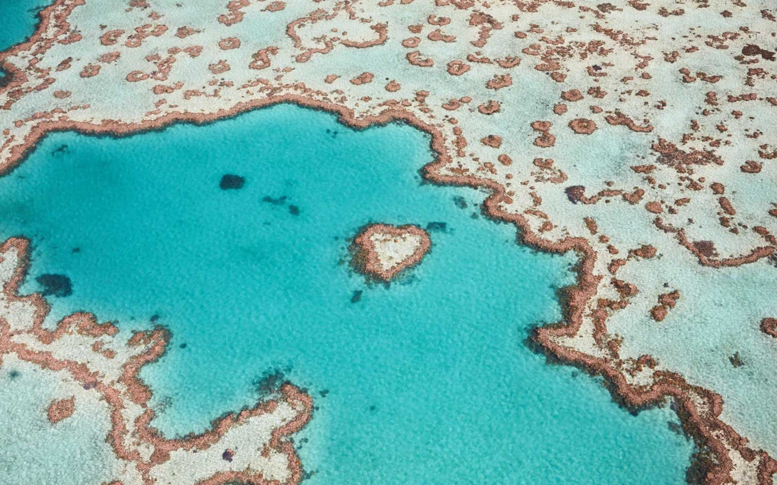 Paris Accords Will Protect The Great Barrier Reef