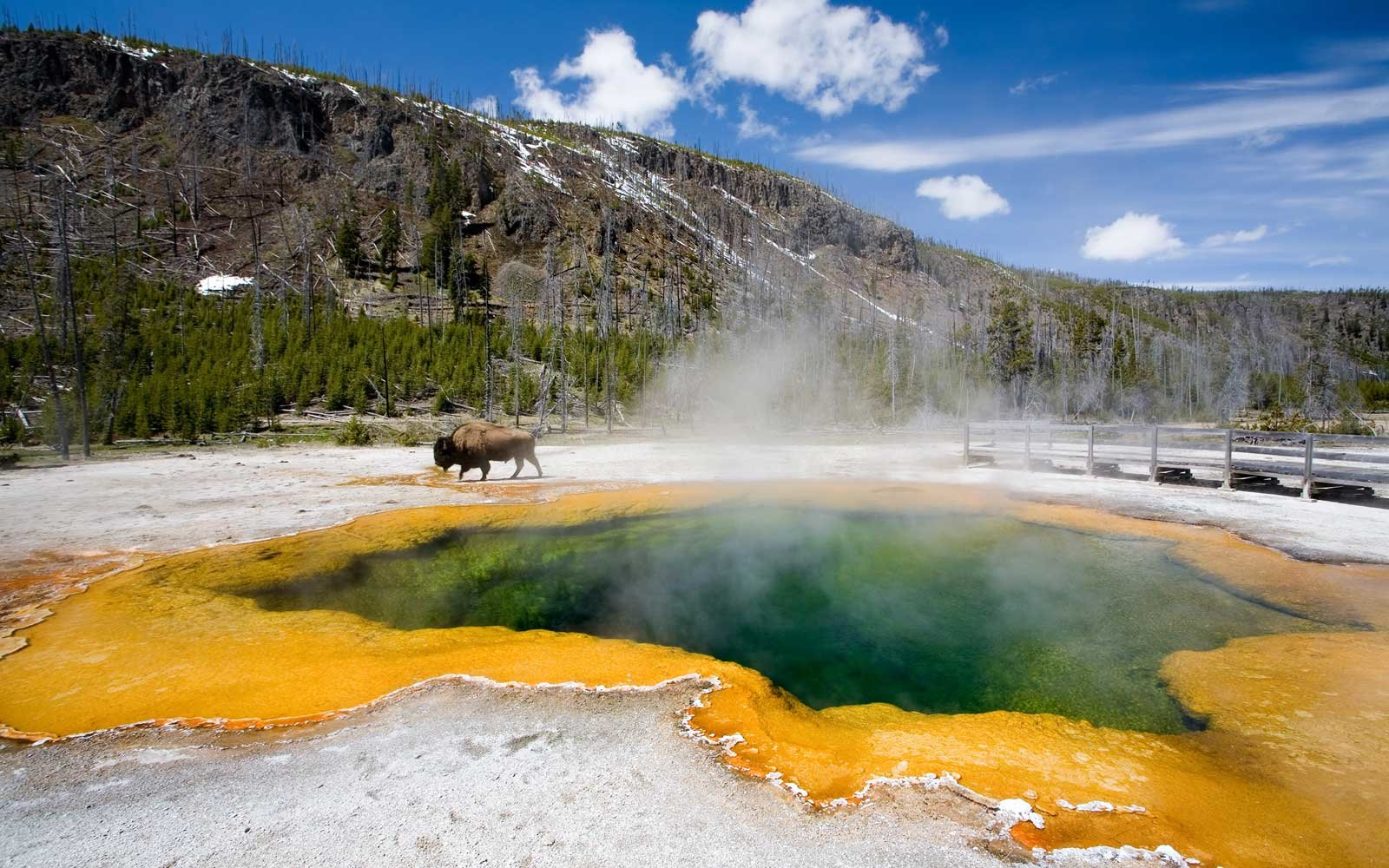 Paris Accords Will Protect Yellowstone National Park