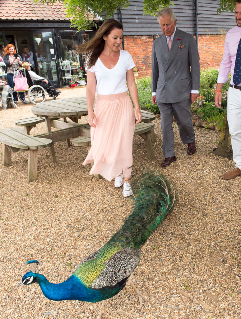 IPSWICH, UNITED KINGDOM - JUNE 05: Prince Charles, Prince of Wales, Patron, The Rare Breeds Survival Trust, is accompanied by Jimmy and Michaela Doherty as he visits Jimmy's Farm to meet the trust's new President, Jimmy Doherty, and find out more about hi