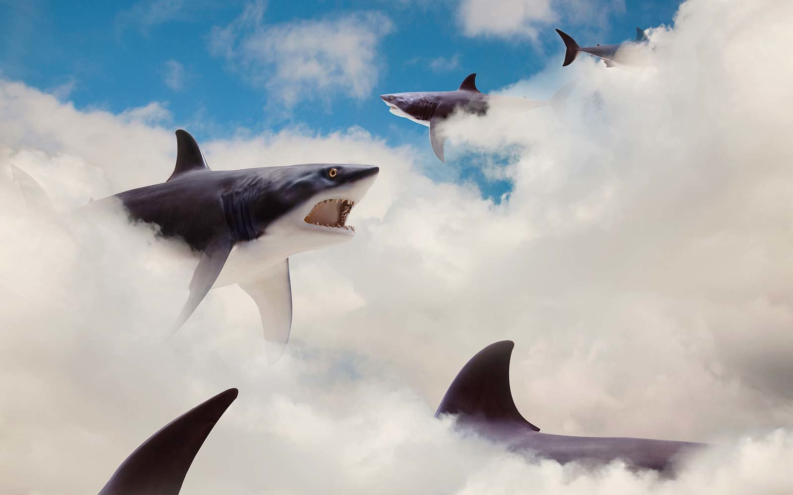 Sharks floating in clouds