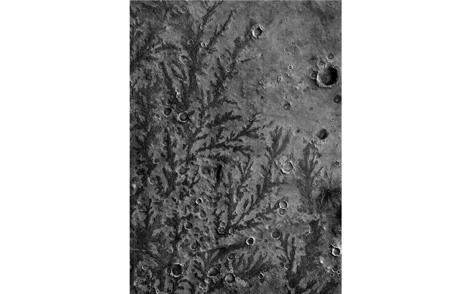 Branch-like Forms on the Floor of the Antoniadi Crater, LAT: 21.4° LONG: 61.3°; from This Is Mars (Aperture, 2017)