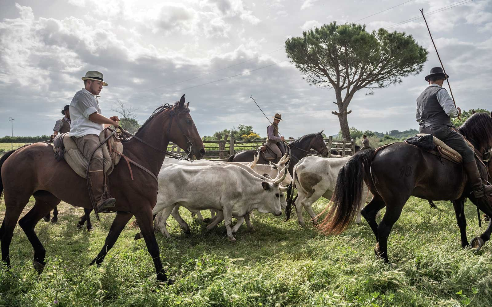 Italy's Cowboy Tradition