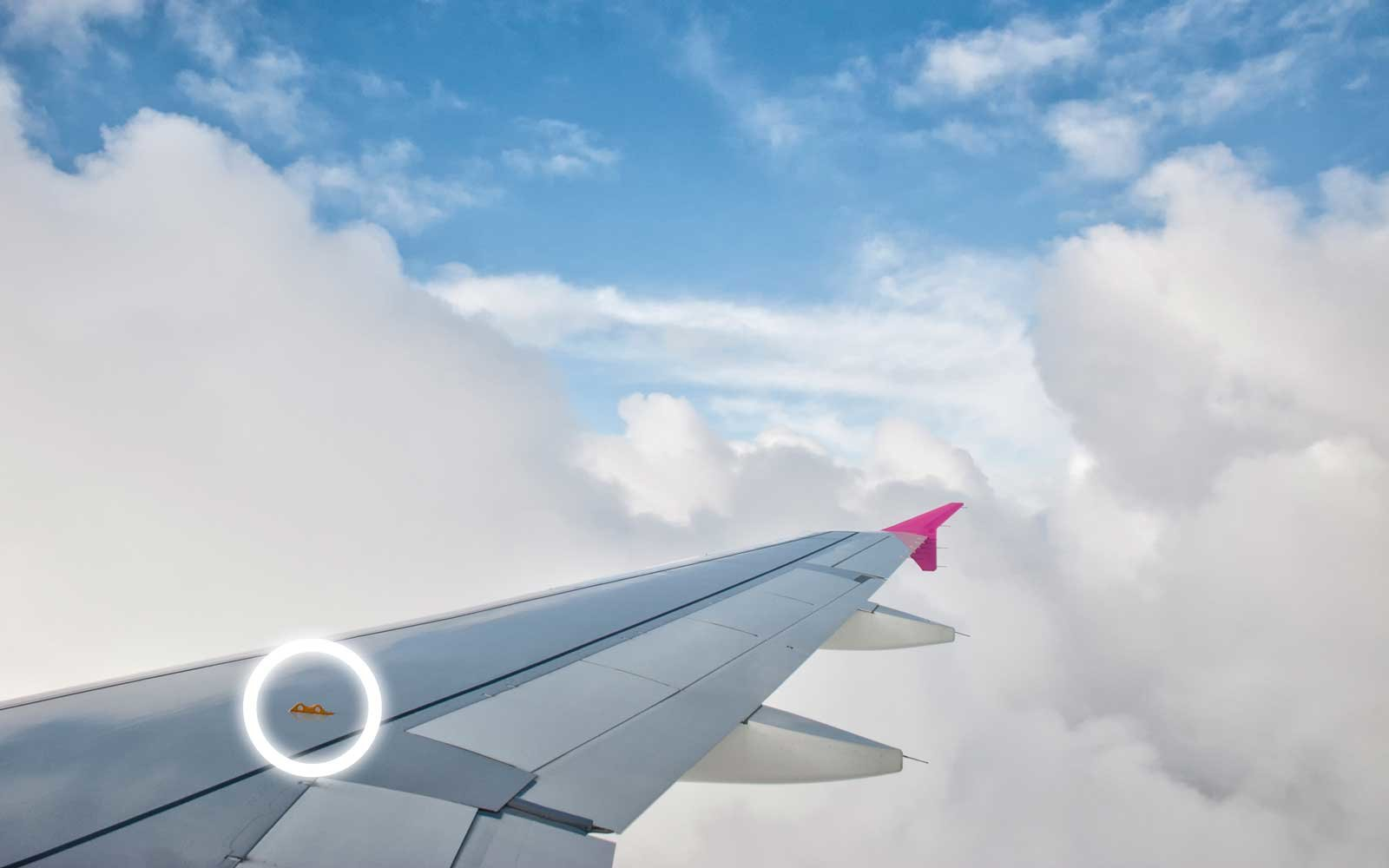 the hidden feature on airplane wings that could save your life in