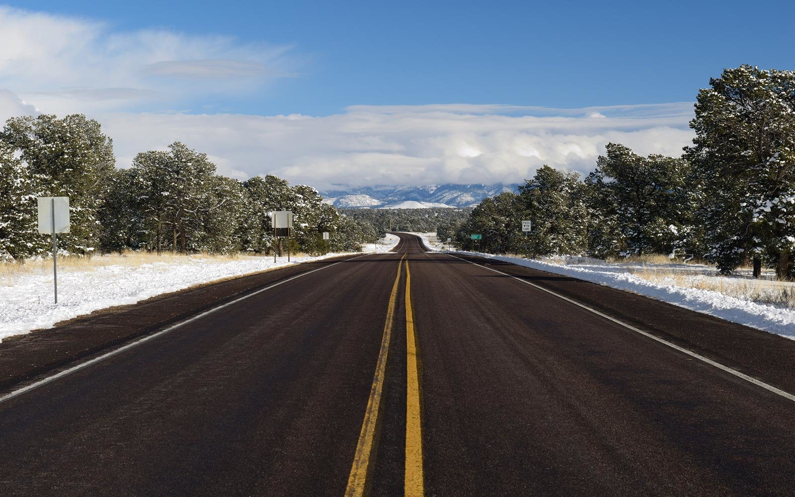 Route 60, Cibola National Forest, New Mexico