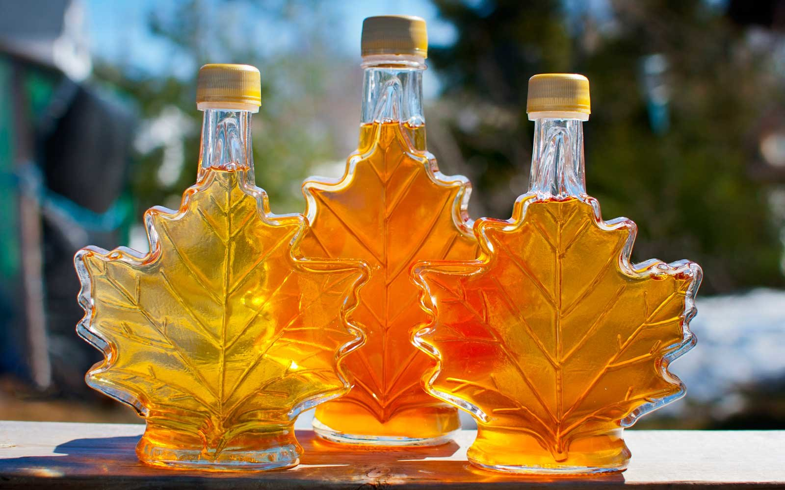 150 reasons canada is great in honor of its 150th anniversary