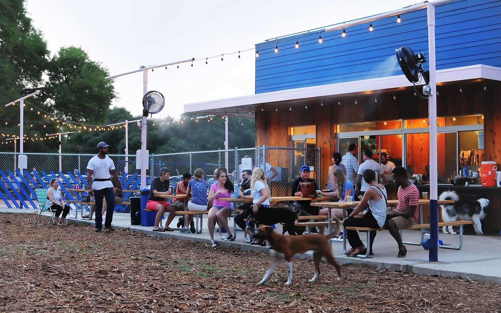 The Most Dog Friendly Restaurants In The U S Travel