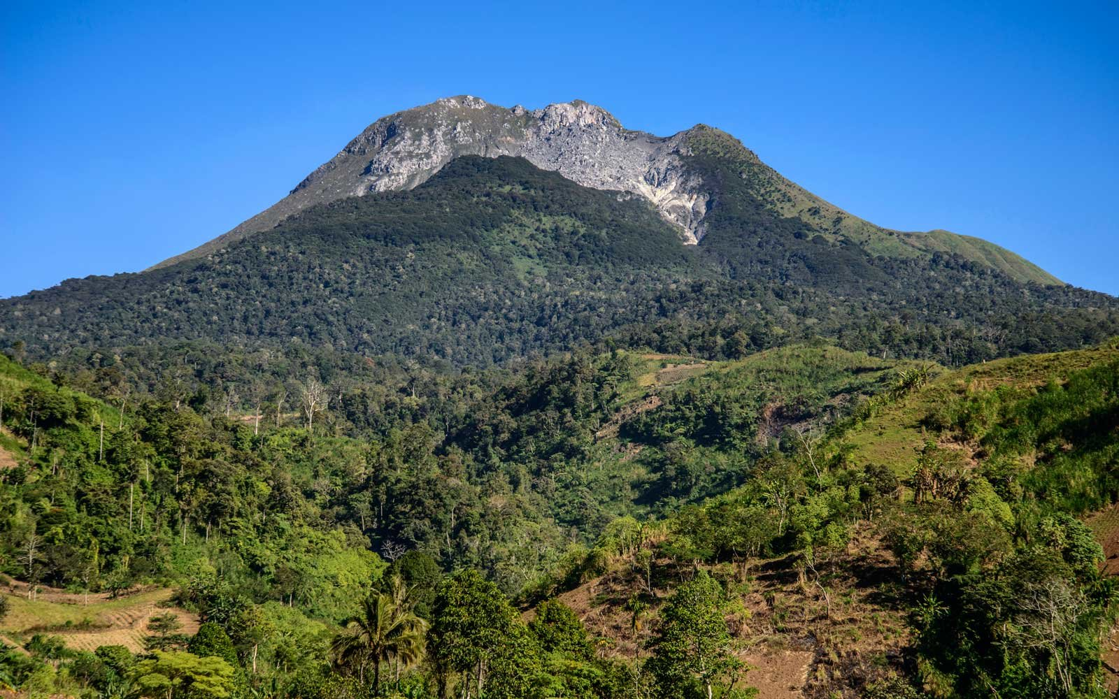 Philippines, Mindanao island, Davao region, Mount Apo national park