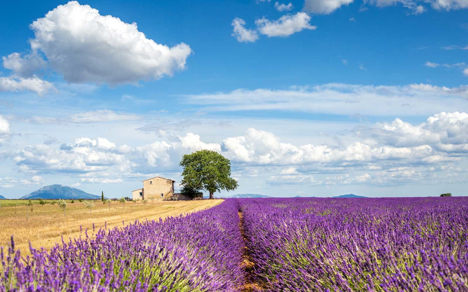 The Best Points of Interest in France for a Whirlwind Tour