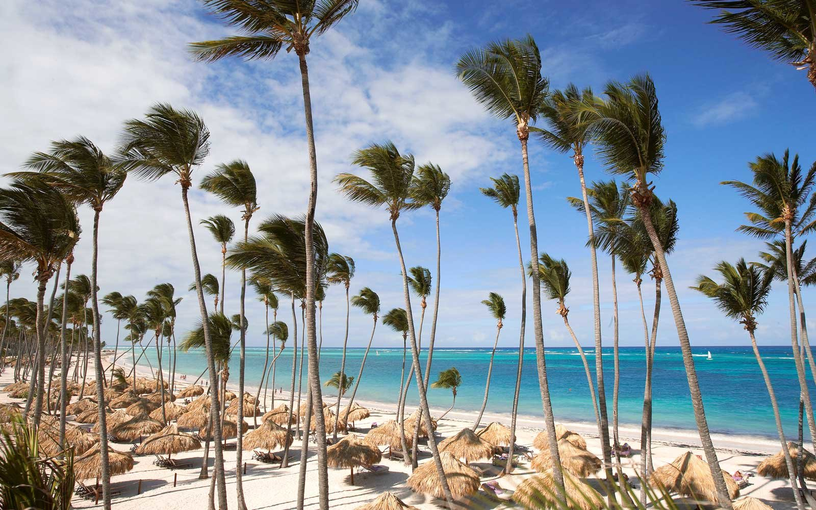 Reserve at Paradisus Palma Real in the Dominican Republic