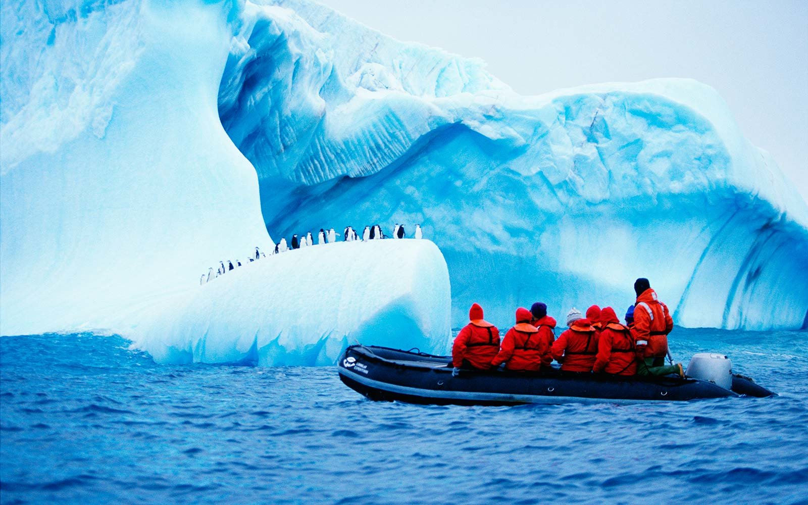 Travel Job Silversea Is Hiring Antarctica Expedition