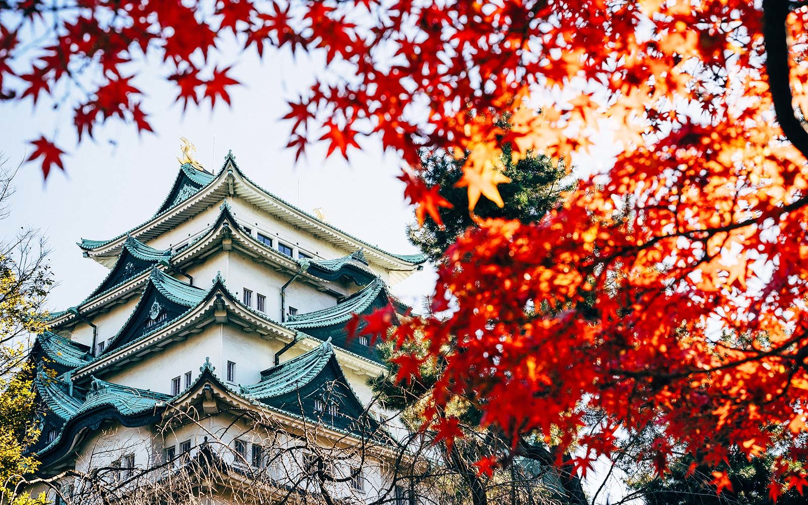 How To Fly To Japan For Only 392 Round Trip Travel