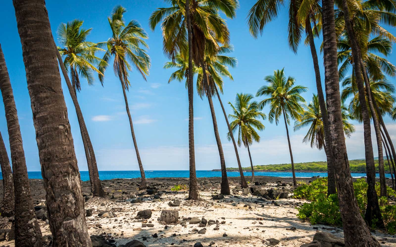 Flights To Hawaii Could Soon Be Cheaper Than Ever Travel