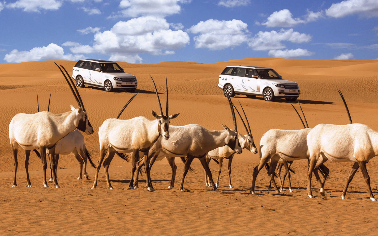 Platinum Luxury Desert Safari Dubai