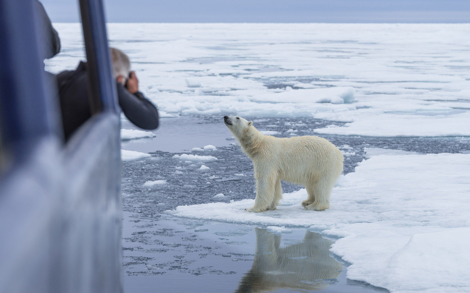 Svalbard Photography Polar Safari