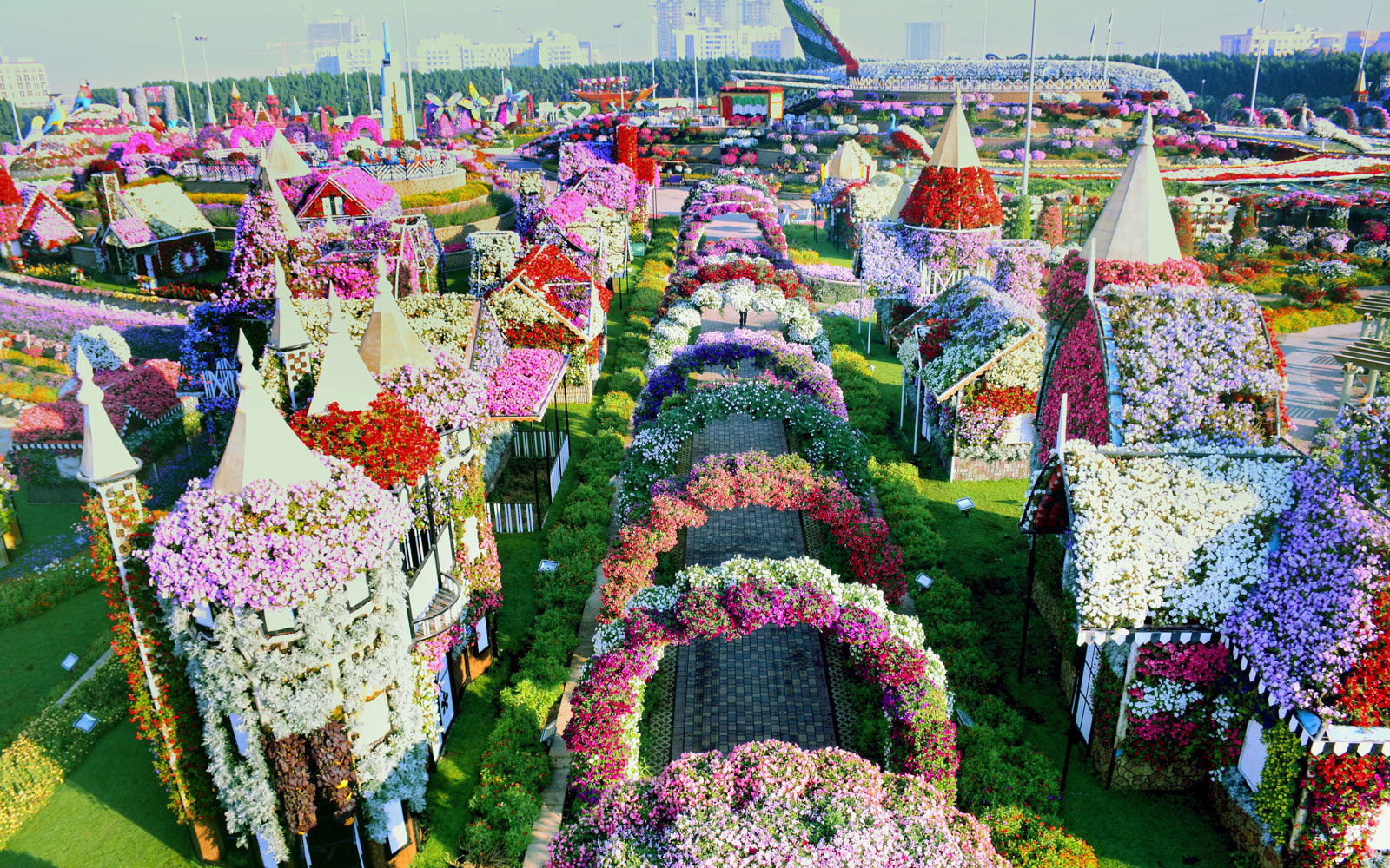 The worlds biggest flower garden sits in the middle of a desert dubai miracle garden full entrance dhlflorist Images