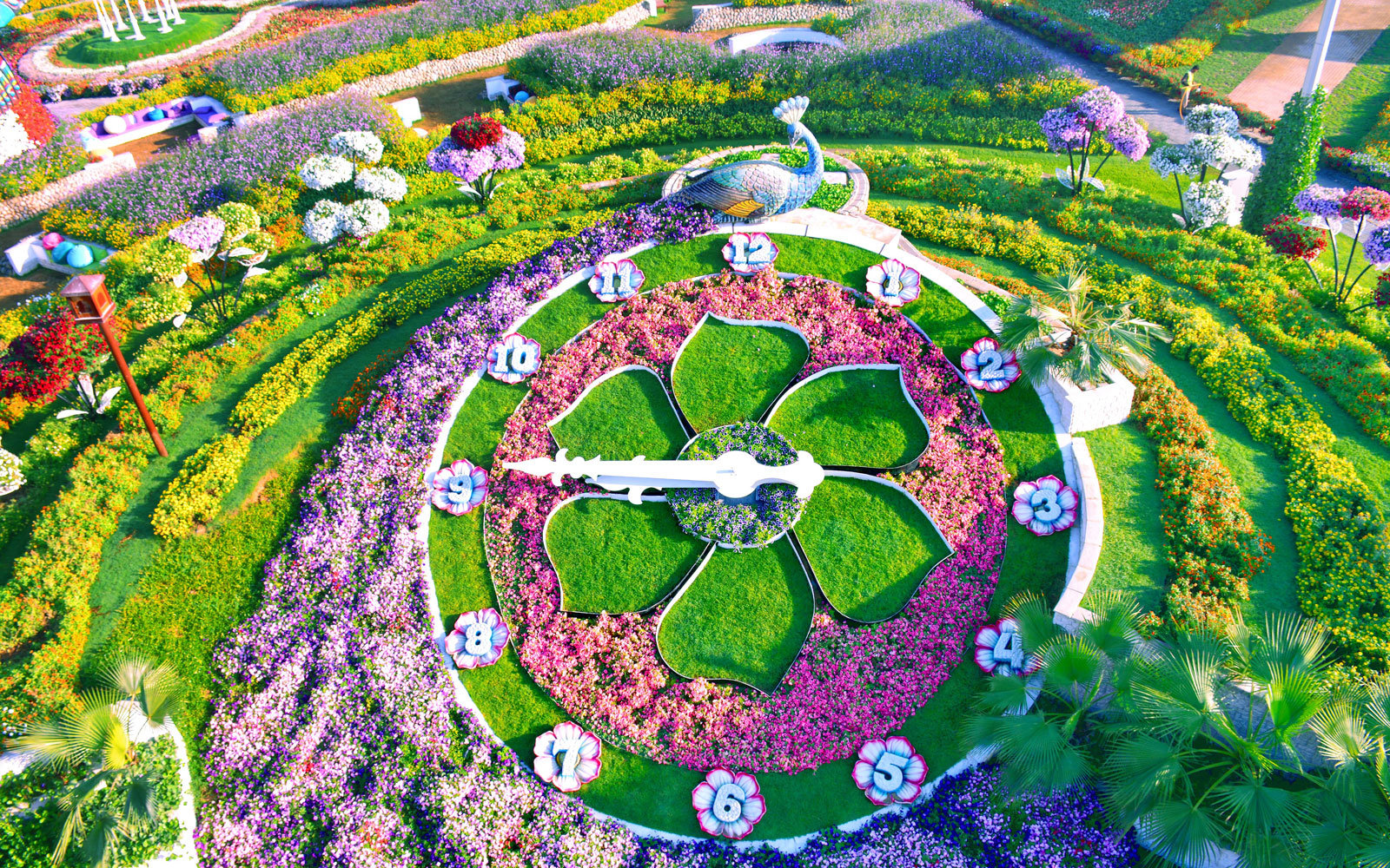 The world s biggest flower garden sits in the middle of a for The landscape gardener