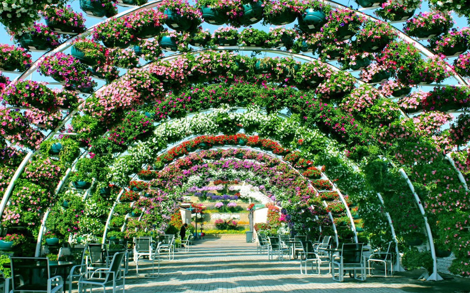 Dubai Miracle Garden Seating Area