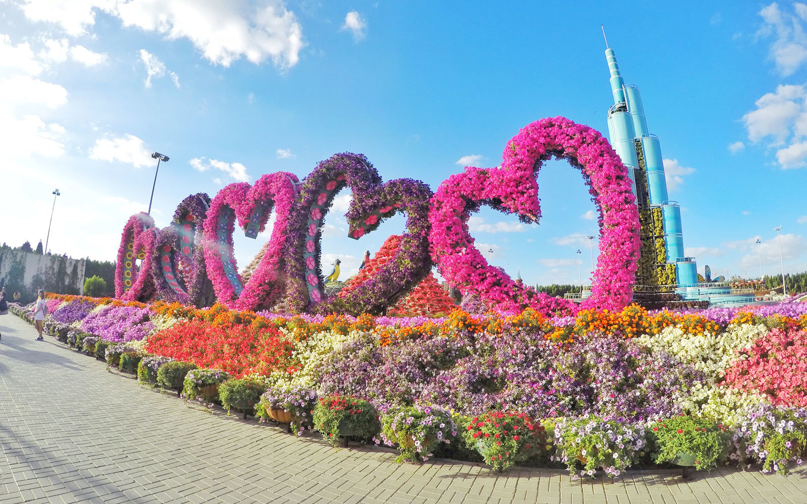 The World's Biggest Flower Garden Sits in the Middle of a ... - photo#10