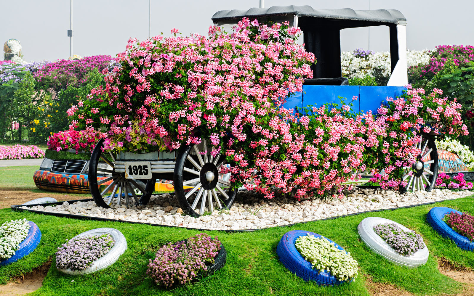 dubai miracle garden car