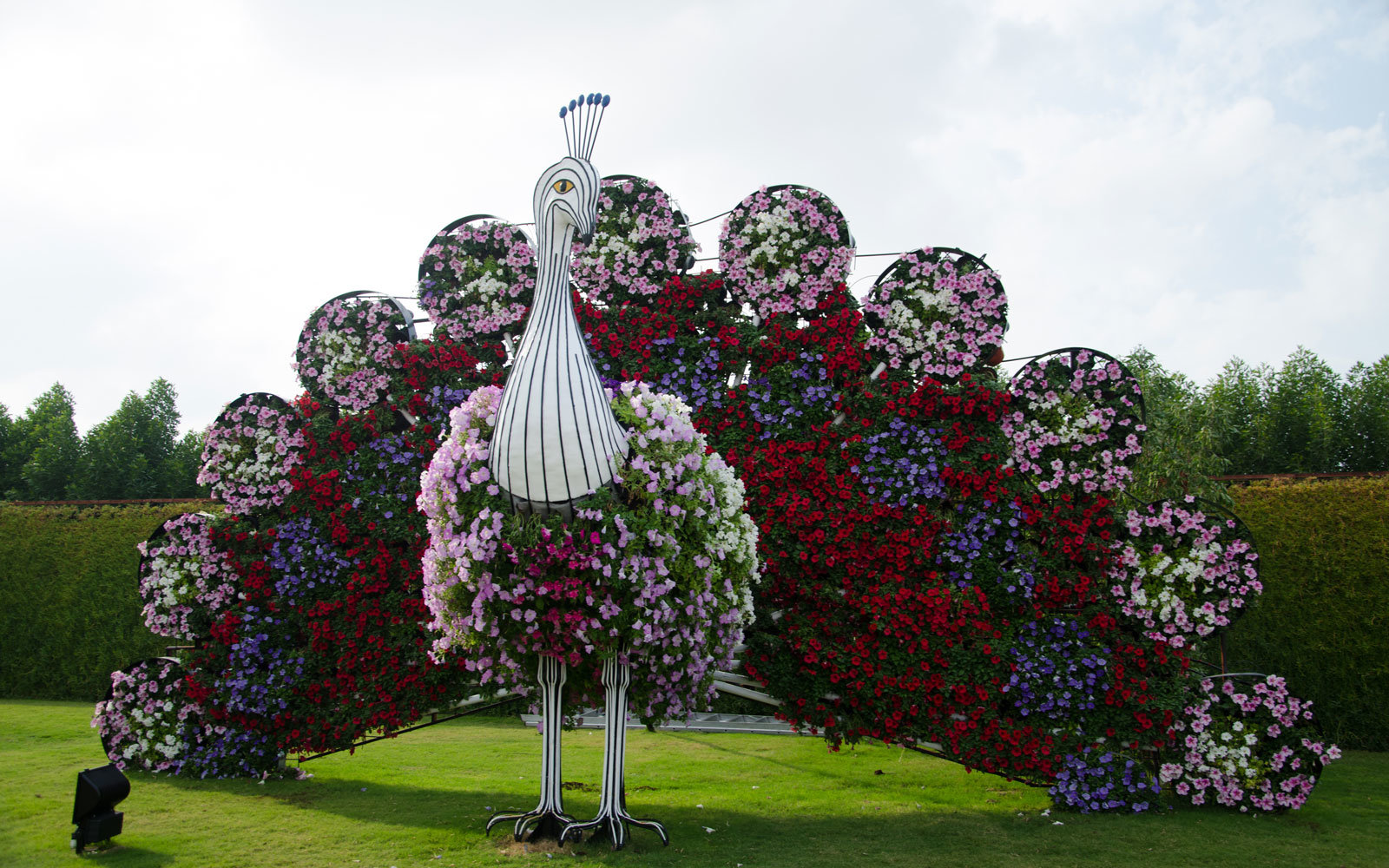 The worlds biggest flower garden sits in the middle of a desert playful designs walk the grounds of izmirmasajfo Images