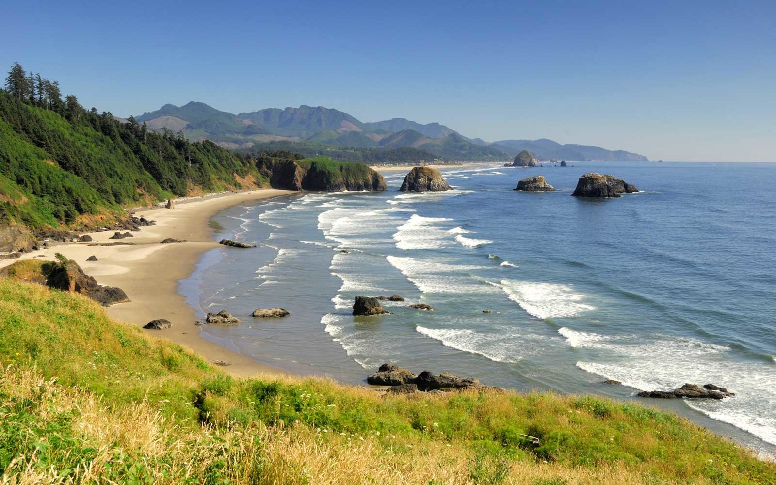 Drive Along the Oregon Coast in Fall
