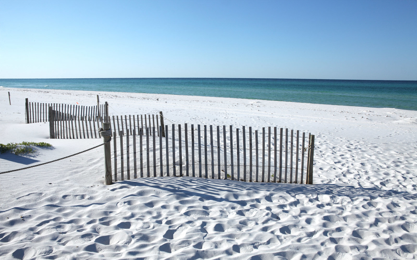 Fences hinder people stepping on seagrasses in Grayton Beach, Florida.