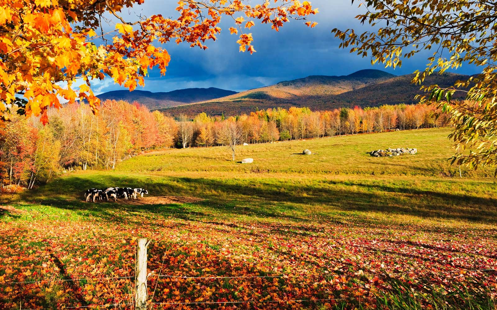 Fall colours and Mont Sutton, Sutton, Eastern Townships, Quebec