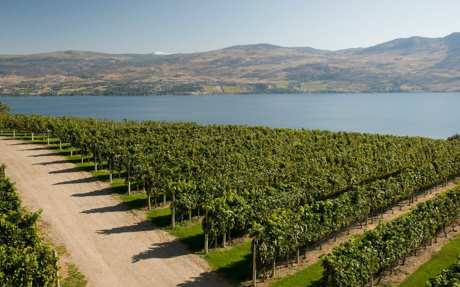 Mission Hill Winery in the Okanagan Valley, Canada's leading wine producing region in British Columbia