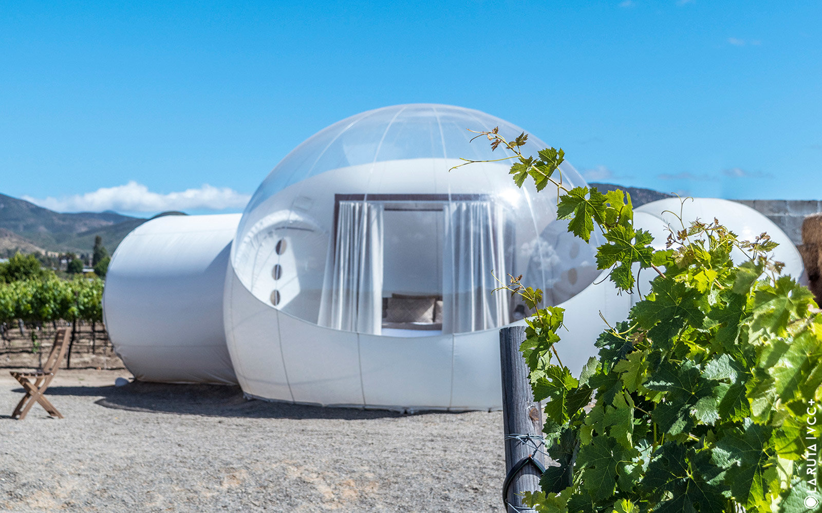 Campera Hotel -- Bubble Suites in a vineyard