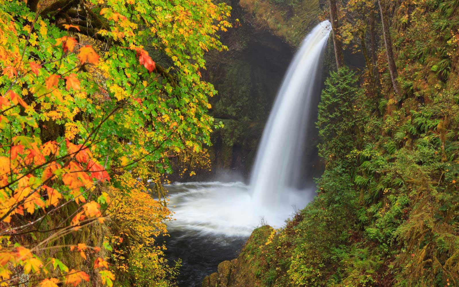 Metlako Falls, Columbia River Gorge, Oregon