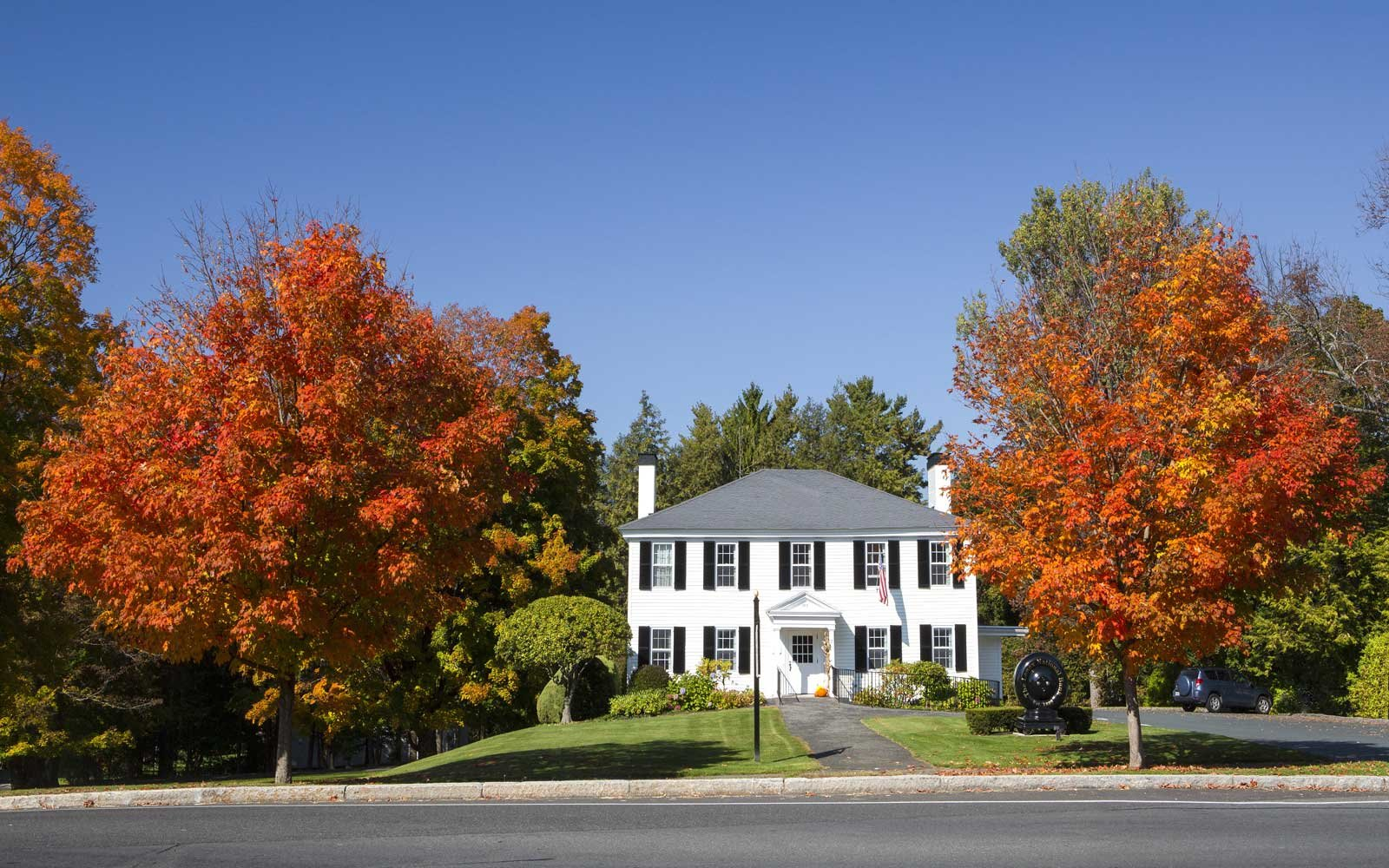 Autumn Trees in Lenox, Massachusetts