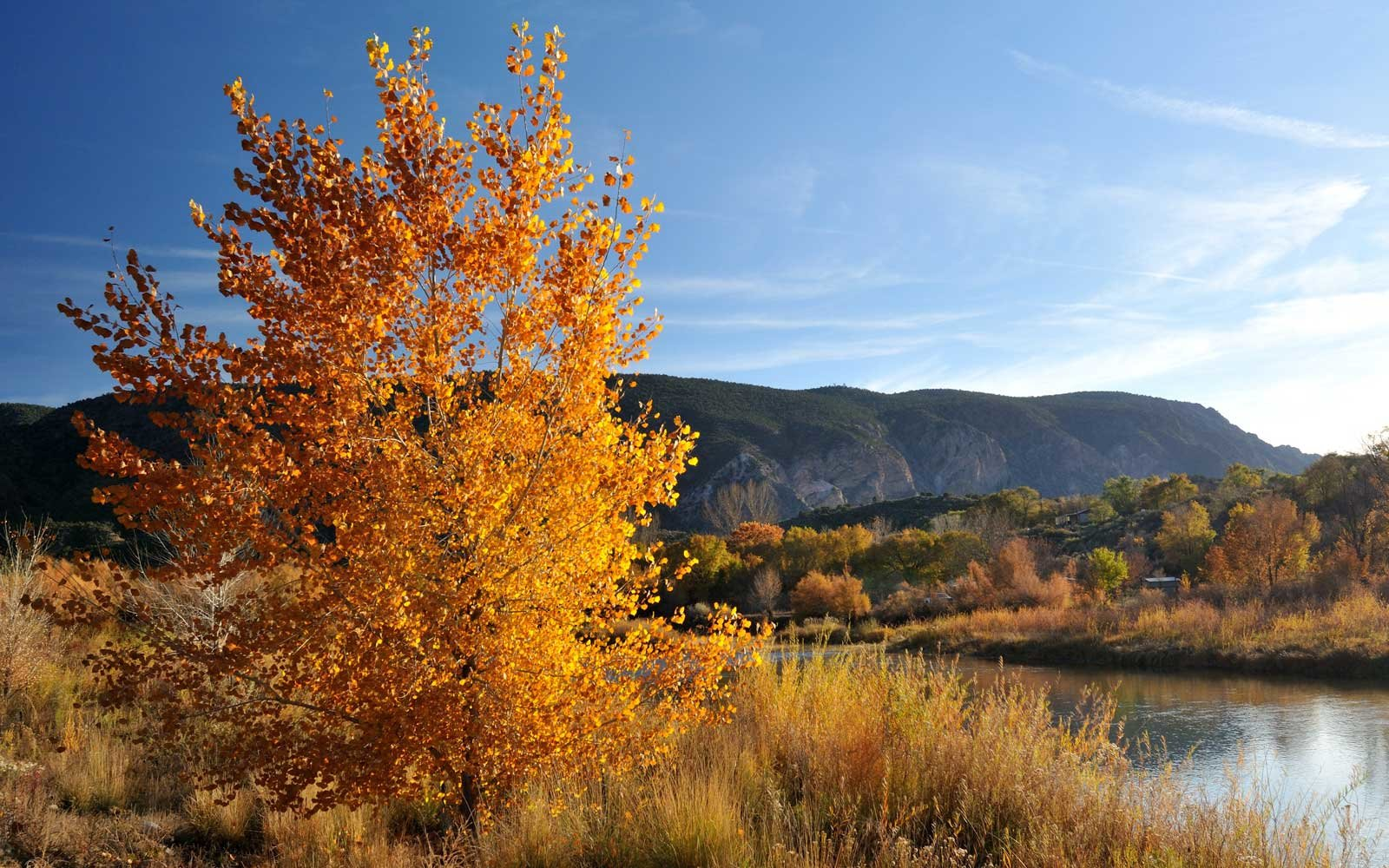 Autumn Colors in Taos, New Mexico