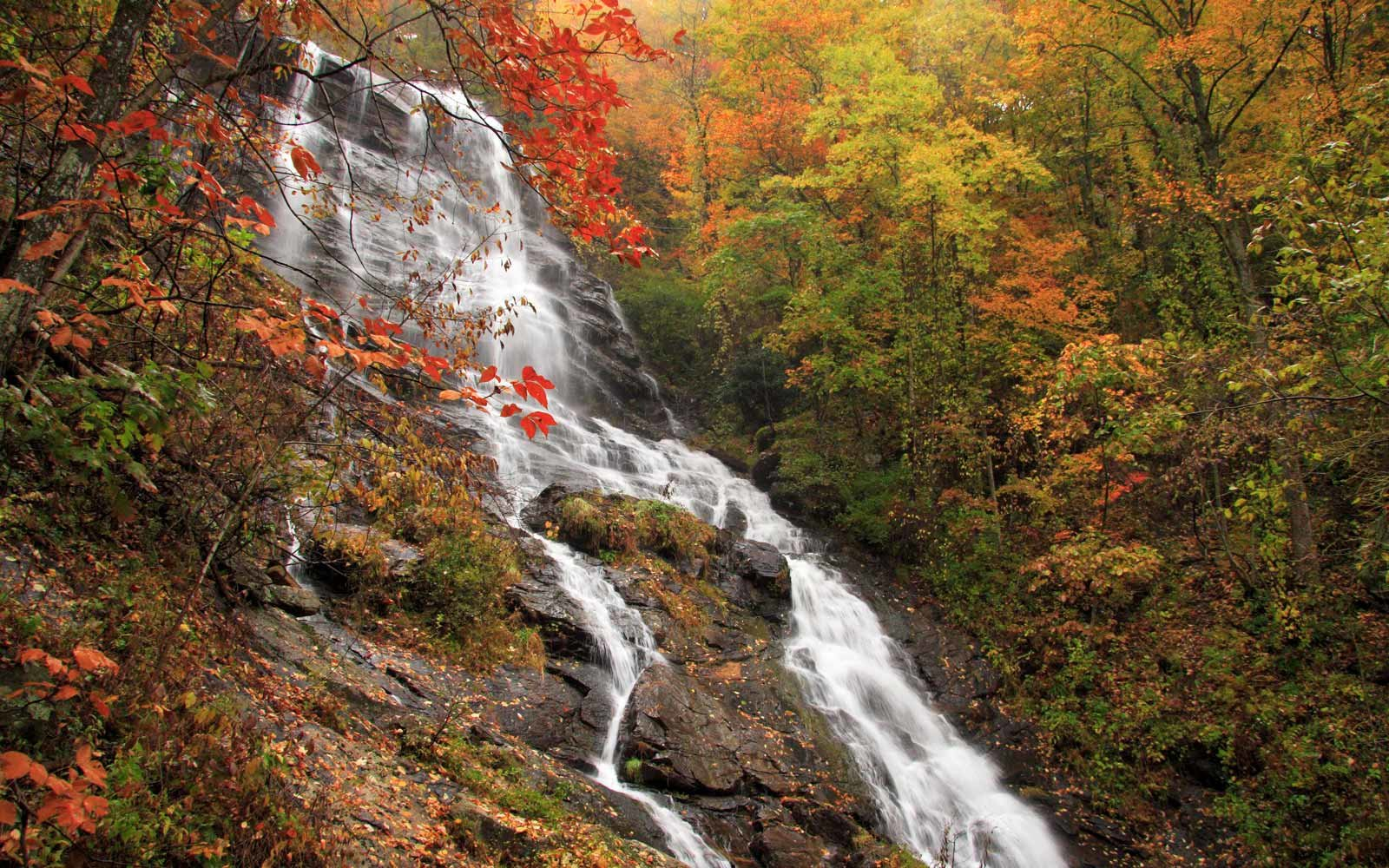 Amicalola Falls State Park, Georgia, in Fall