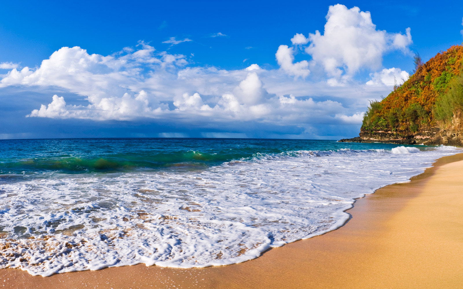 The Na Pali Coast State Park is a 6,175 acres (2,499 ha) Hawaiian state park located in the center of the rugged 16 miles (26 km) along the northwest side of Kauai, the oldest inhabited Hawaiian island. The Na Pali coast itself extends southwest starting