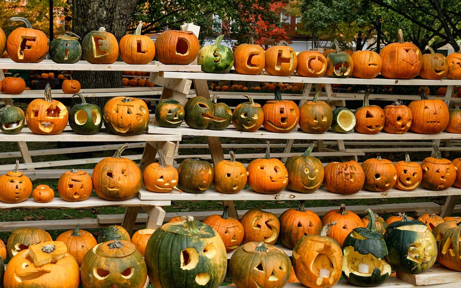 New Hampshire Pumpkin Festival