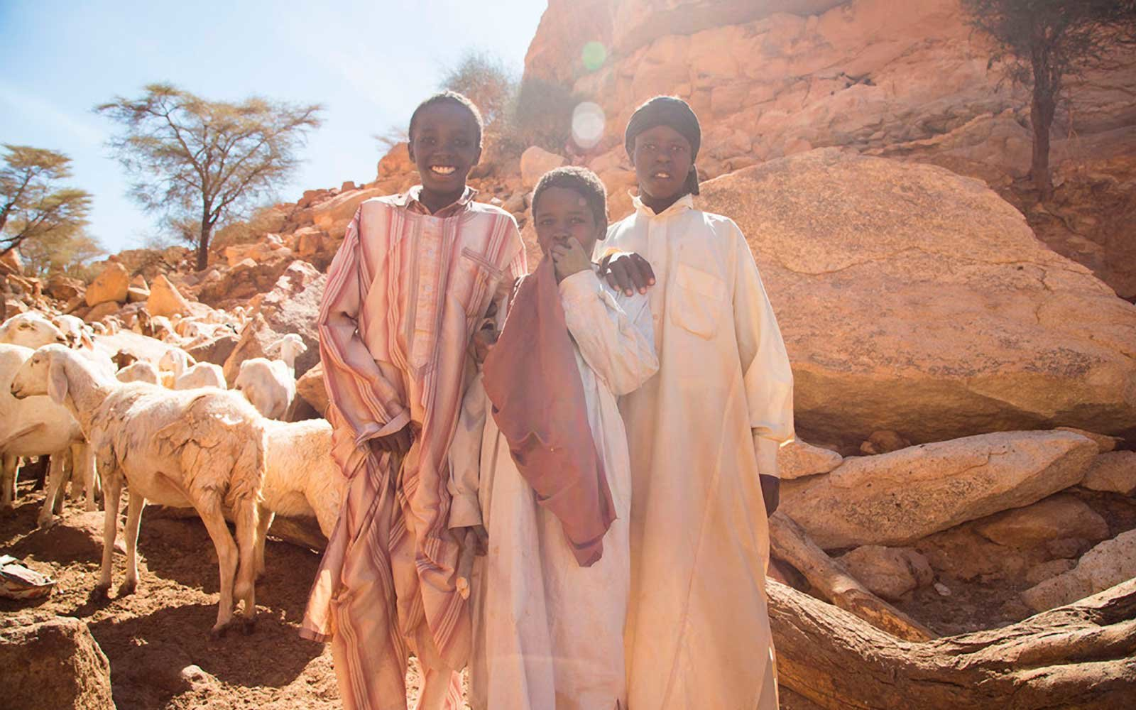 Young shepherds in Chad