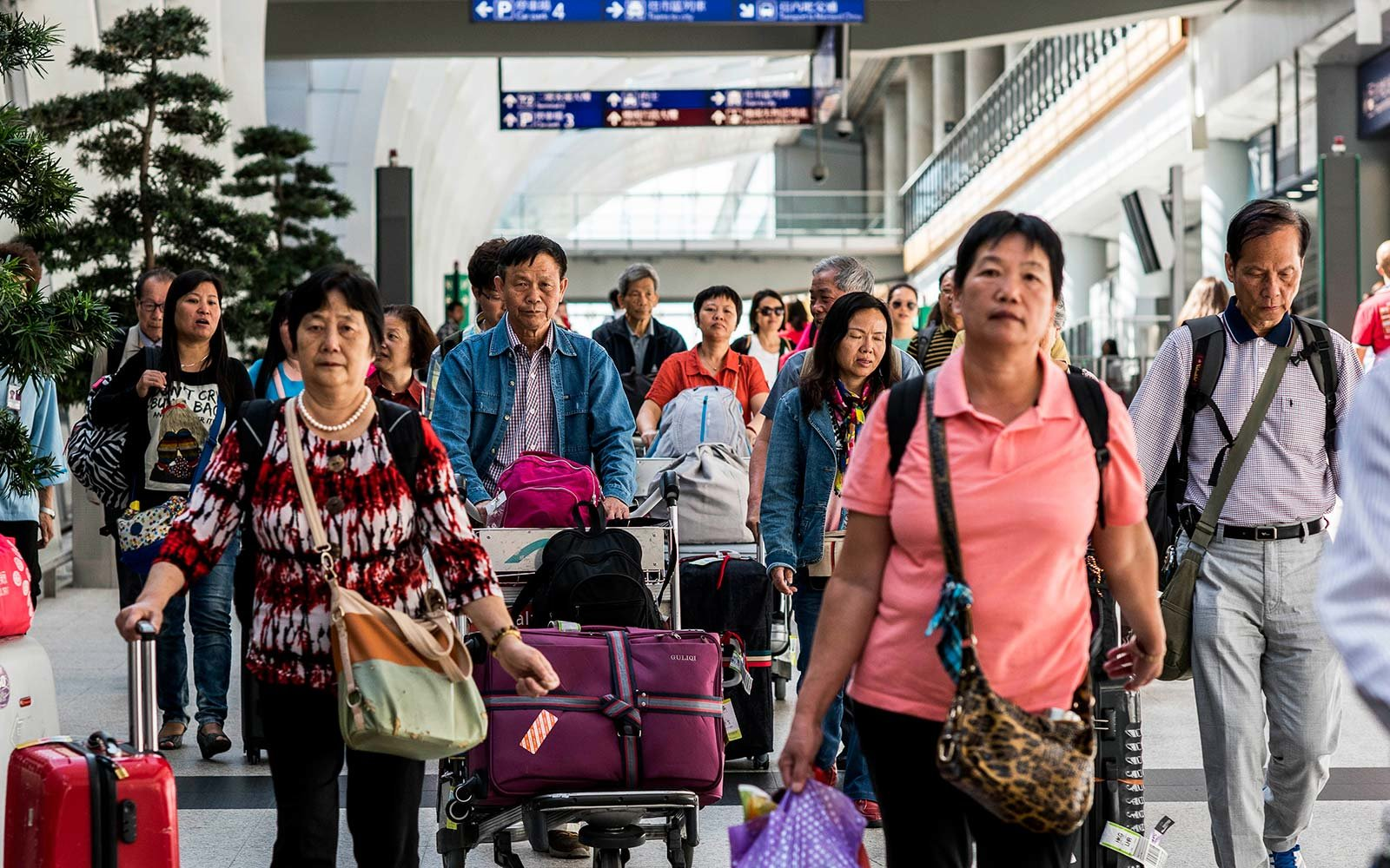 Airport luggage travel check-in counter suitcase family