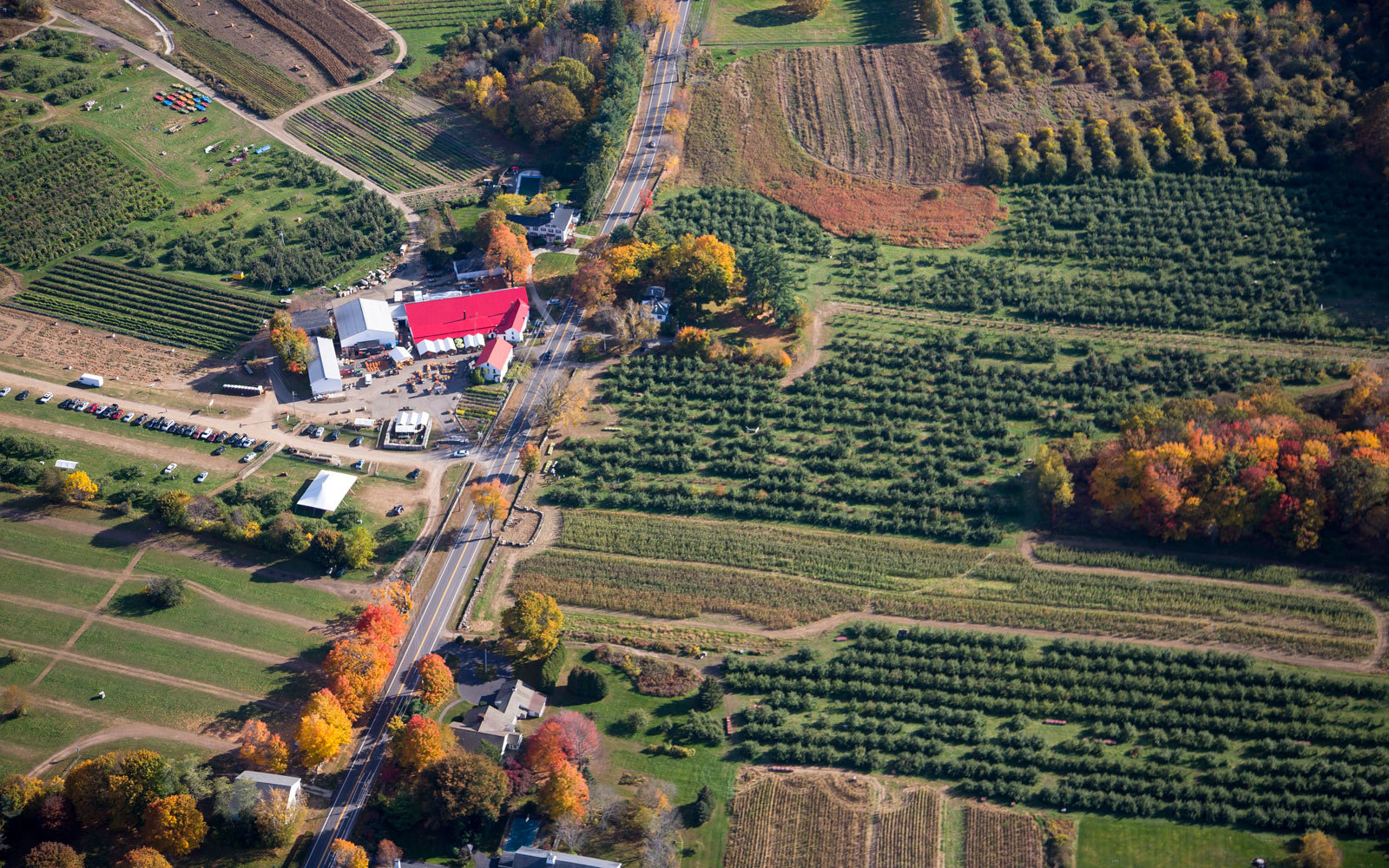 The 19 Best Places To Go Apple Picking In The United