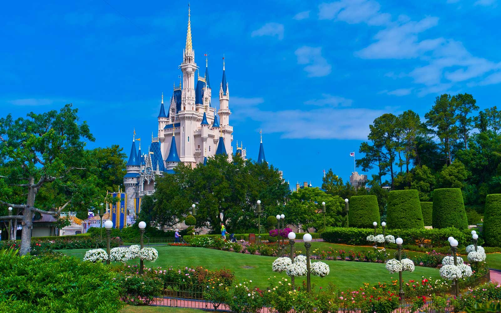Spend a Night in Cinderella's Castle