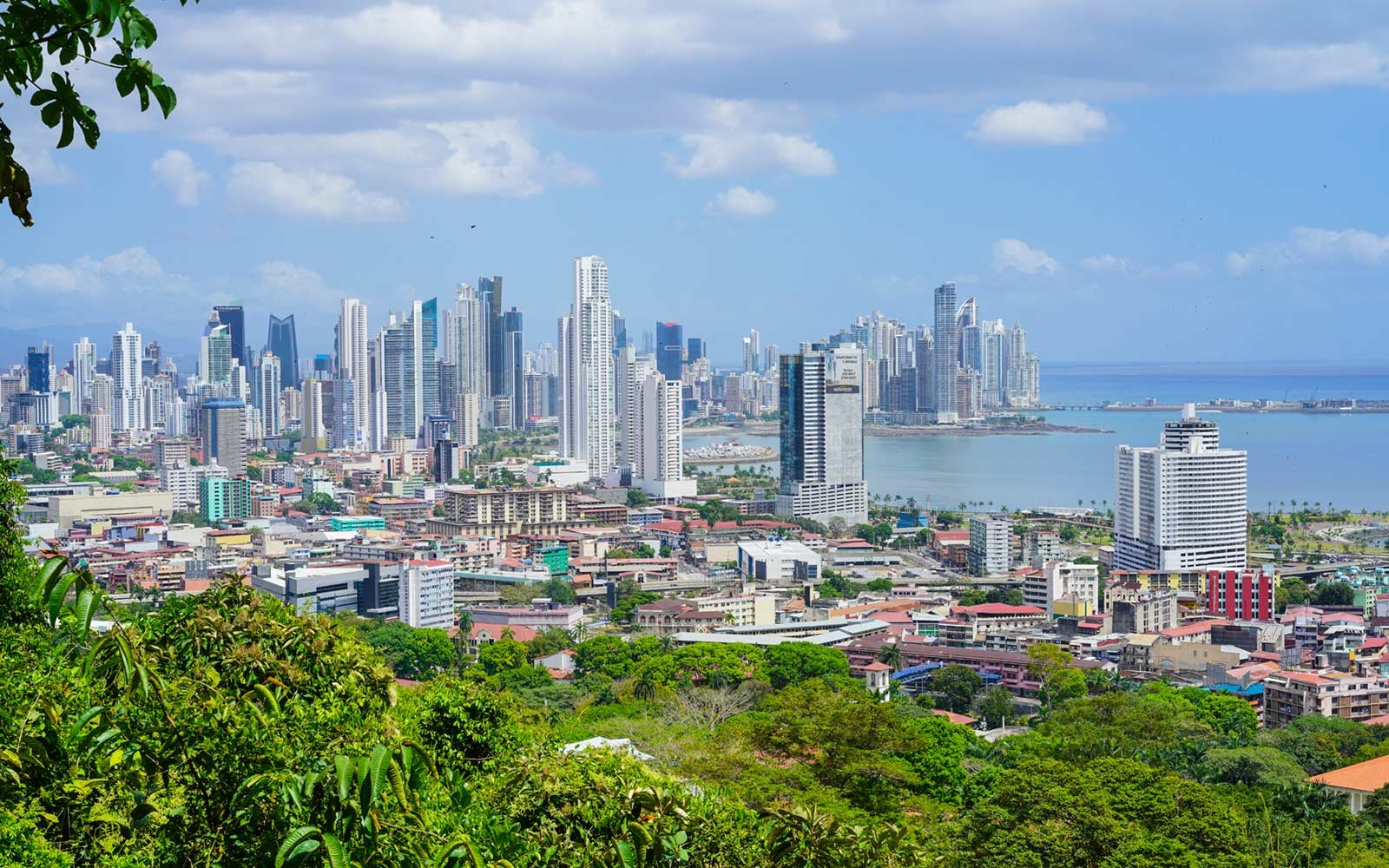 panama city nature adventures for animal lovers travel leisure