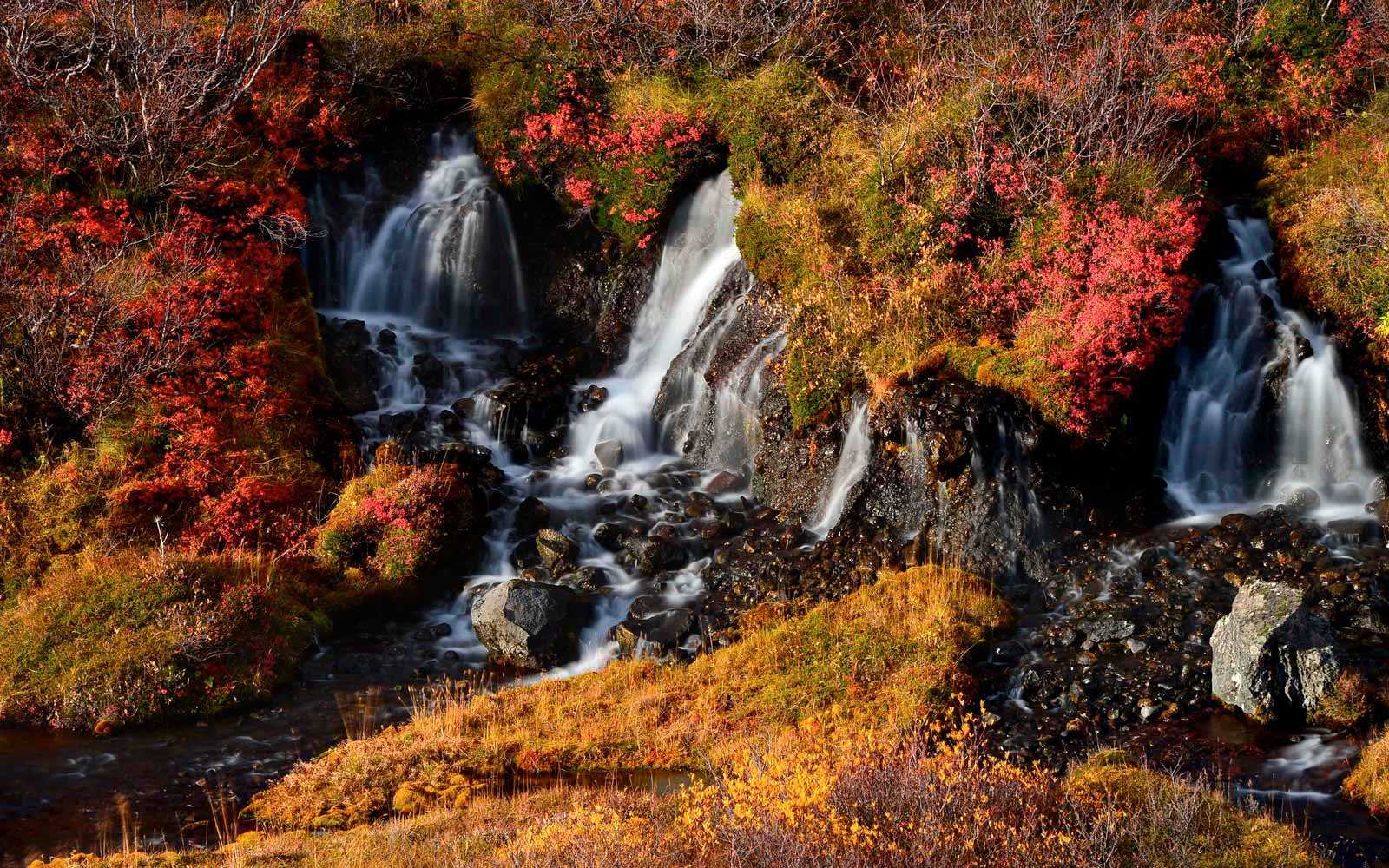 Hraunfossar waterfall, Iceland. Autumn colorful landscape